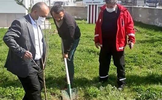 Kurum bahçeleri ağaçlandırılıyor