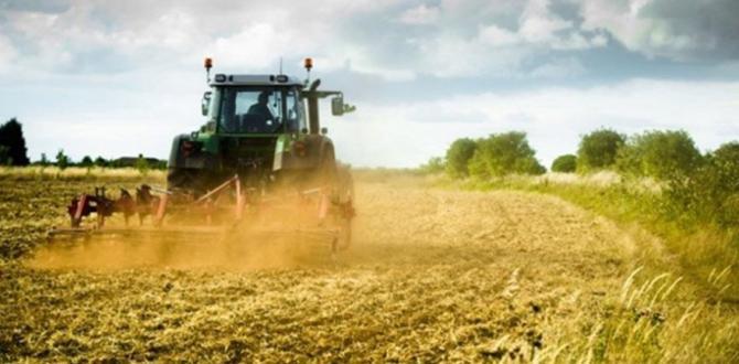 Tarımsal fiyat endeksi arttı