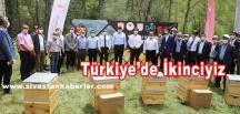 Türkiye'de İkinciyiz