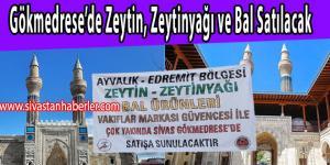 Gökmedrese'de Zeytin, Zeytinyağı ve Bal Satılacak