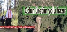 Odun üretim yolu hazır