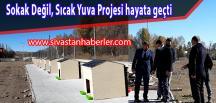 Sokak Değil, Sıcak Yuva Projesi hayata geçti