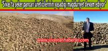 """""""Sivas'ta şeker pancarı üreticilerinin yaşadığı mağduriyet devam ediyor"""""""