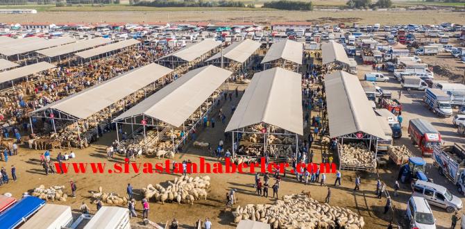 10 bin hayvan kapasitesiyle 2013'ten bugüne hizmet veriyor